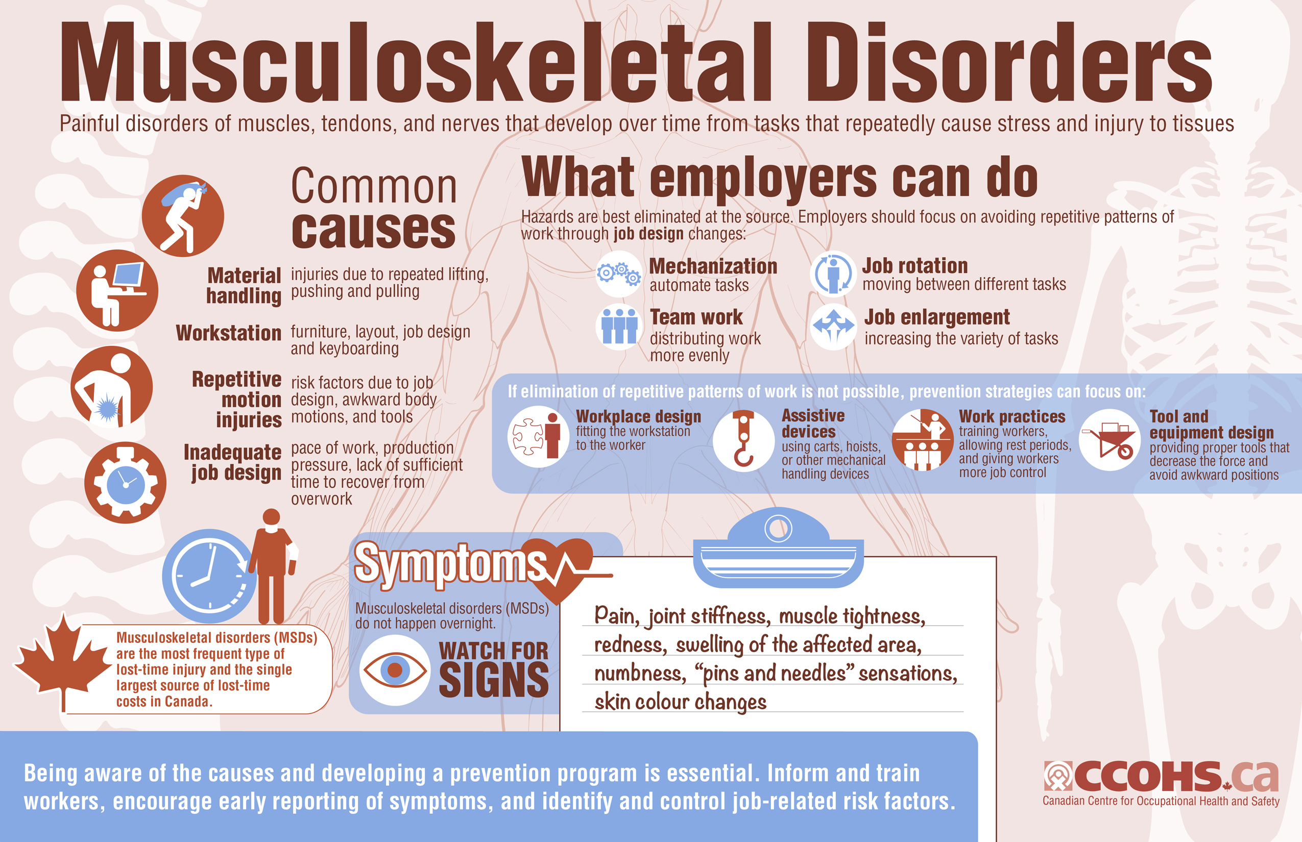 Muscoloskeletal Disorder of professional drivers